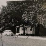 cottages (25)